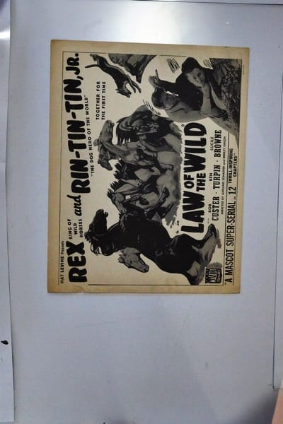 Law of the Wild Lobby Card Movie Poster RIN-TIN-TIN